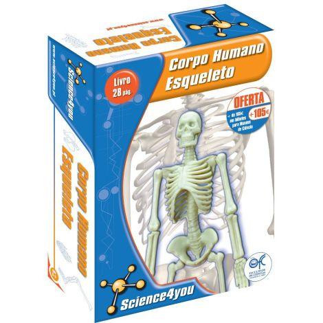 Corpo Humano - Esqueleto